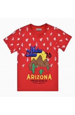 ARIZONA WINTAGE PRINT TSHIRT